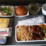 Singapore Airlines - First Meal - Houston to Moscow (DME)